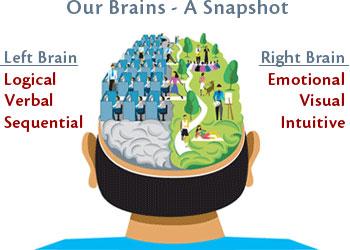 Left Brain, Right Brain, Slow Start, Fast Forward